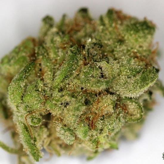 weed blog