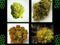 pictures of weed