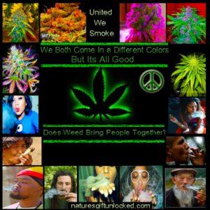 smoking weed meme
