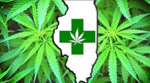 illionis medical marijuana