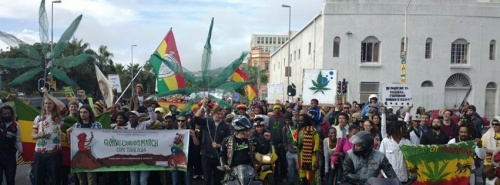 south Africa marijuana protest
