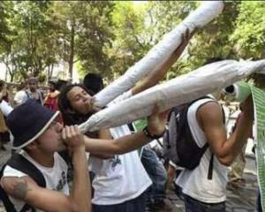 marijuana lovers in mexico