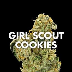 marijuana_strain_girl_scout_cookies