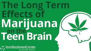 Long Term Marijuana Study