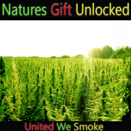naturesgiftunlocked.com