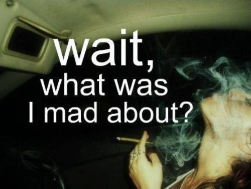 Stoner Quotes | Top 5 Weed Quotes Memes Stoner Quotes Enjoy Marijuana Blog